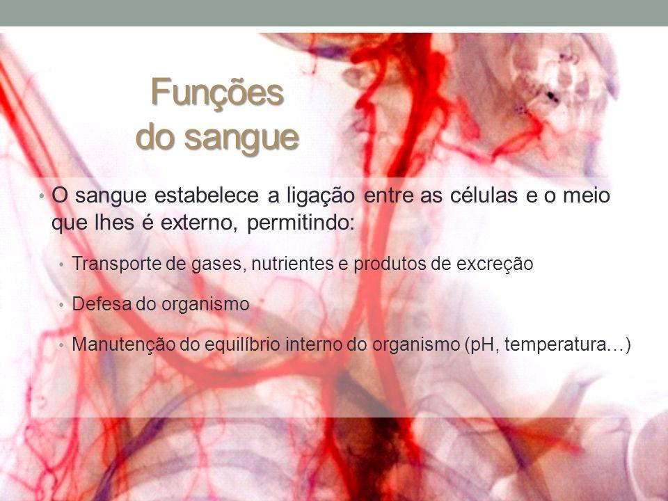 Funções do sangue • O sangue estabelece a ligação entre as células e o meio que lhes é externo, permitindo: • Transporte de gases, nutrientes e produtos de excreção • Defesa do organismo • Manutenção do equilíbrio interno do organismo (pH, temperatura…)