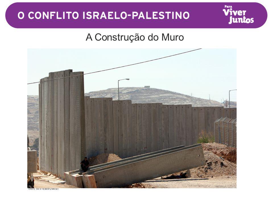 A Construção do Muro Crédito: David Mckee/Shutterstock