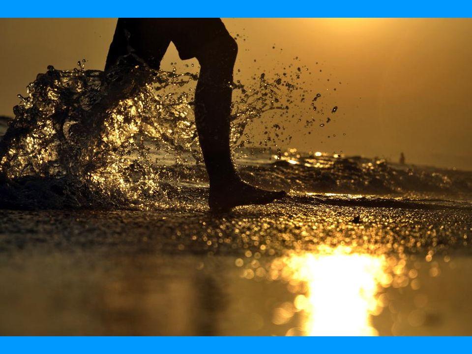 O MUNDO EM FOTOGRAFIAS CLIQUE COM AUDIO NO LITORAL Nós, seres humanos somos atraídos para a costa, cerca de 40% da população do mundo vive nas zonas costeiras.