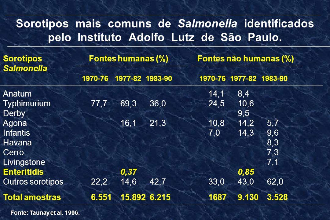 Sorotipos mais comuns de Salmonella identificados pelo Instituto Adolfo Lutz de São Paulo. Sorotipos Fontes humanas (%) Fontes não humanas (%) Salmone