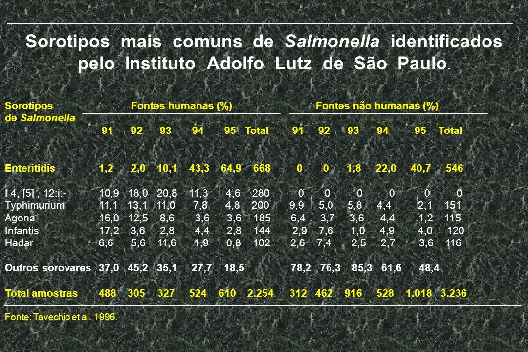 Sorotipos mais comuns de Salmonella identificados pelo Instituto Adolfo Lutz de São Paulo. Sorotipos Fontes humanas (%) Fontes não humanas (%) de Salm