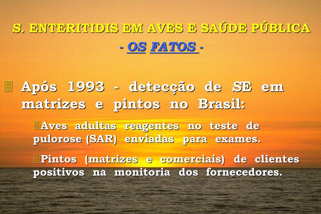 S. ENTERITIDIS EM AVES E SAÚDE PÚBLICA - OS FATOS - 3 Após 3 Após 1993 - detecção de S E S E em matrizes e pintos no Brasil: 3 Aves 3 Aves adultas rea