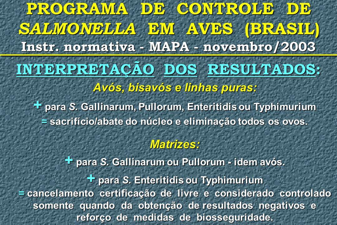 PROGRAMA DE CONTROLE DE SALMONELLA EM AVES (BRASIL) Instr. normativa - MAPA - novembro/2003 INTERPRETAÇÃO DOS RESULTADOS: Avós, bisavós e linhas puras