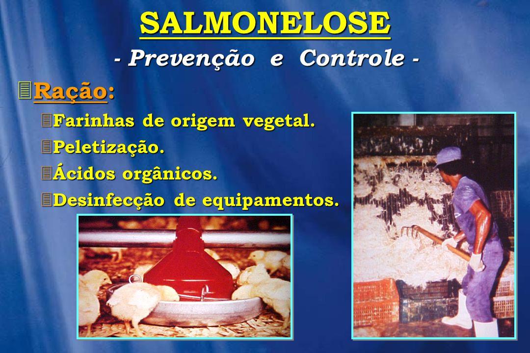SALMONELOSE 3 Ração: 3 Farinhas 3 Farinhas de origem vegetal. 3 Peletização. 3 Ácidos 3 Ácidos orgânicos. 3 Desinfecção 3 Desinfecção de equipamentos.