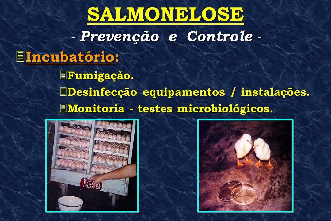 SALMONELOSE 3 Incubatório: 3 Fumigação. 3 Desinfecção 3 Desinfecção equipamentos / instalações. 3 Monitoria 3 Monitoria - testes microbiológicos. - Pr
