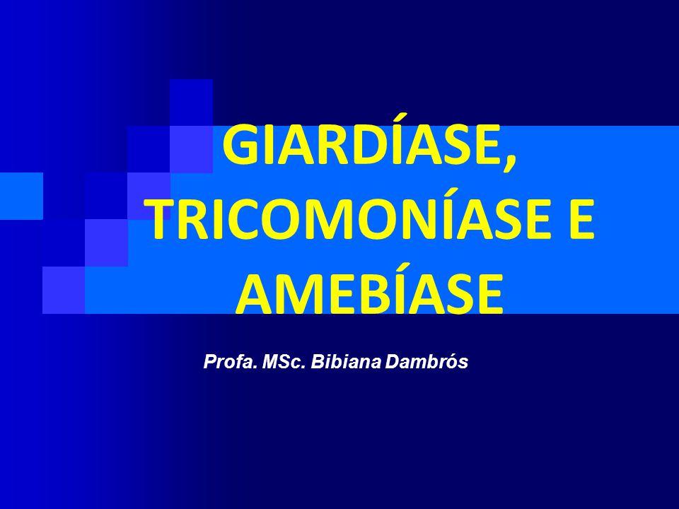 PATOGENIA  a giardíase sintomática pode estar associada ao crescimento de bactérias aeróbicas elou anaeróbicas na porção proximal do intestino delgado.