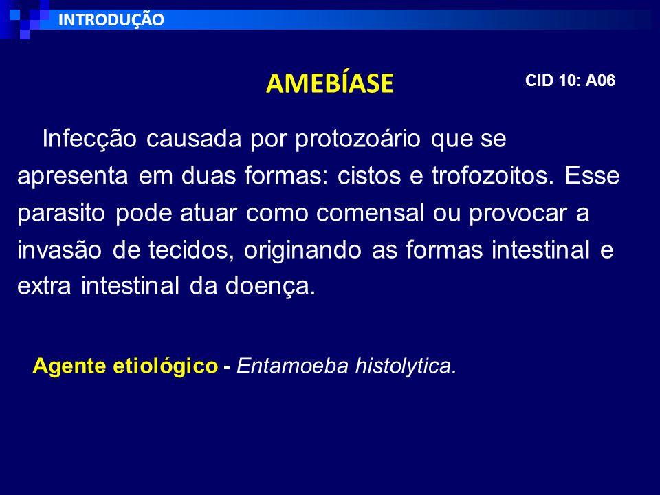 Infecção causada por protozoário que se apresenta em duas formas: cistos e trofozoitos.