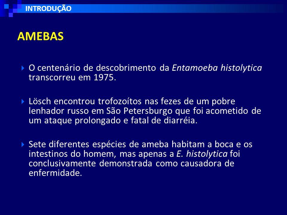  O centenário de descobrimento da Entamoeba histolytica transcorreu em 1975.