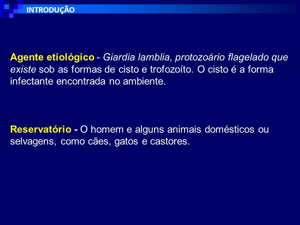 INTRODUÇÃO Agente etiológico - Giardia lamblia, protozoário flagelado que existe sob as formas de cisto e trofozoíto.