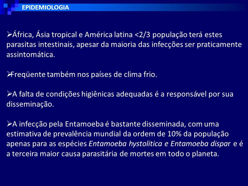 EPIDEMIOLOGIA  África, Ásia tropical e América latina <2/3 população terá estes parasitas intestinais, apesar da maioria das infecções ser praticamente assintomática.