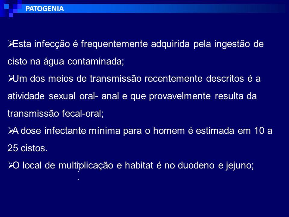 DIAGNÓSTICO CLÍNICO  O diagnóstico da tricomoníase não pode ter como base somente a apresentação clínica;  cérvice com aspecto de morango é observado somente em 2% das pacientes e o comento espumoso somente em 20% das mulheres infectada;  A investigação laboratorial é necessária e essencial, uma vez que leva ao tratamento apropriado e facilita o controle da propagação da infecção.