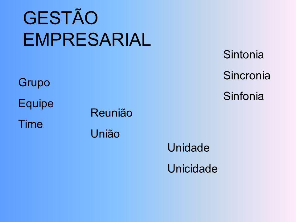 GESTÃO EMPRESARIAL Grupo Equipe Time Sintonia Sincronia Sinfonia Reunião União Unidade Unicidade