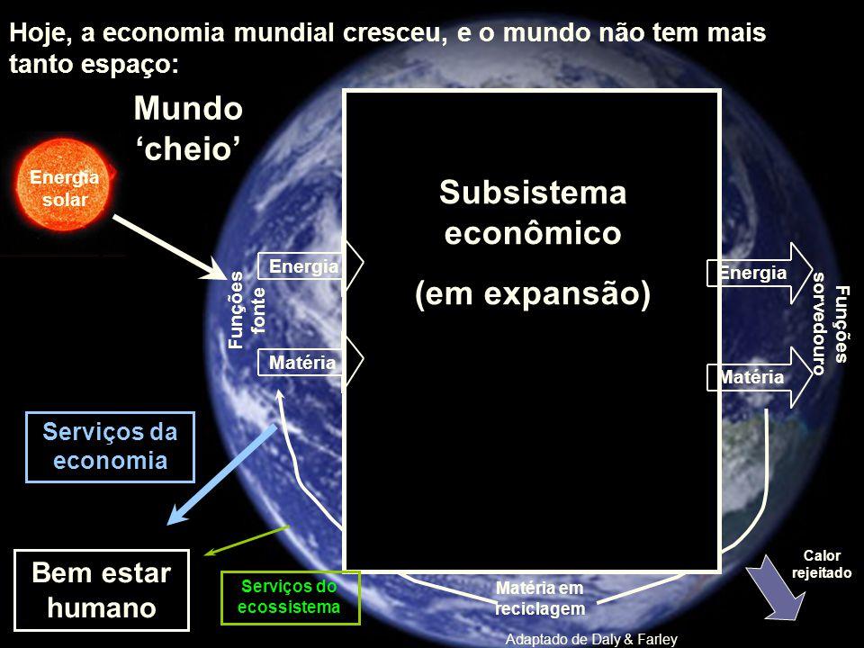Energia solar Calor rejeitado Funções fonte Funções sorvedouro Subsistema econômico (em expansão) Bem estar humano Serviços do ecossistema Serviços da