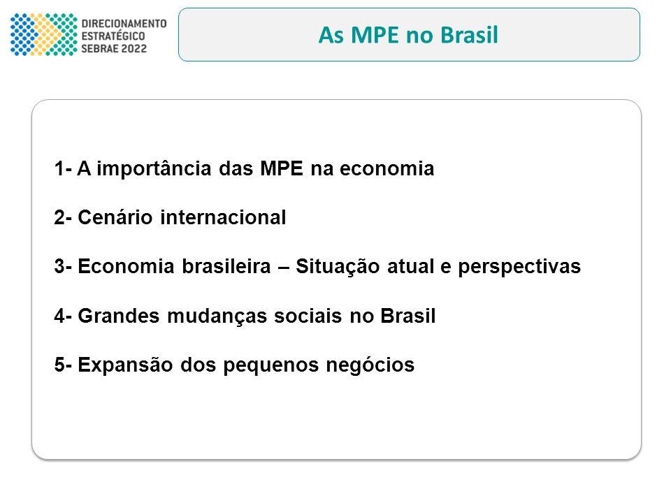 As MPE no Brasil 1- A importância das MPE na economia 2- Cenário internacional 3- Economia brasileira – Situação atual e perspectivas 4- Grandes mudan
