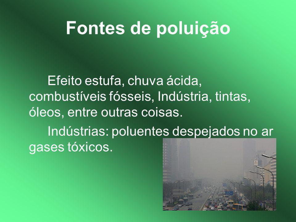 Fontes de poluição Efeito estufa, chuva ácida, combustíveis fósseis, Indústria, tintas, óleos, entre outras coisas. Indústrias: poluentes despejados n
