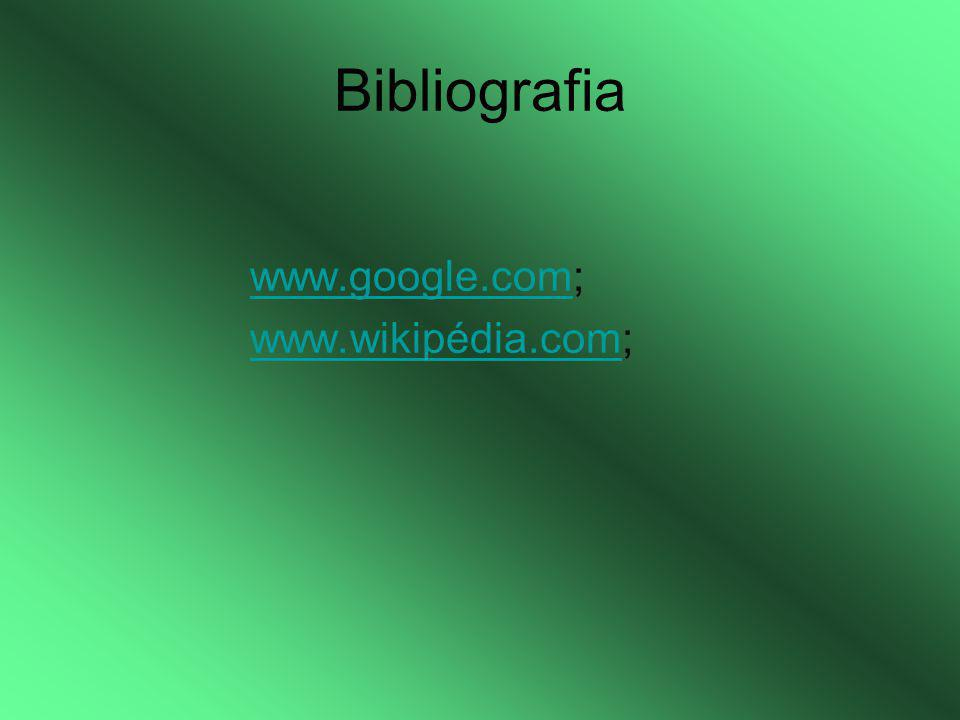 Bibliografia www.google.comwww.google.com; www.wikipédia.comwww.wikipédia.com;