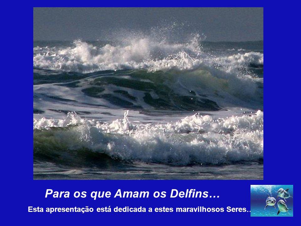 A mensagem dos delfins é o AMOR UNIVERSAL.