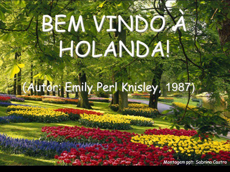 BEM VINDO À HOLANDA! Montagem ppt: Sabrina Castro (Autor: Emily Perl Knisley, 1987)