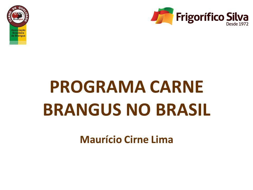PROGRAMA CARNE BRANGUS NO BRASIL Maurício Cirne Lima