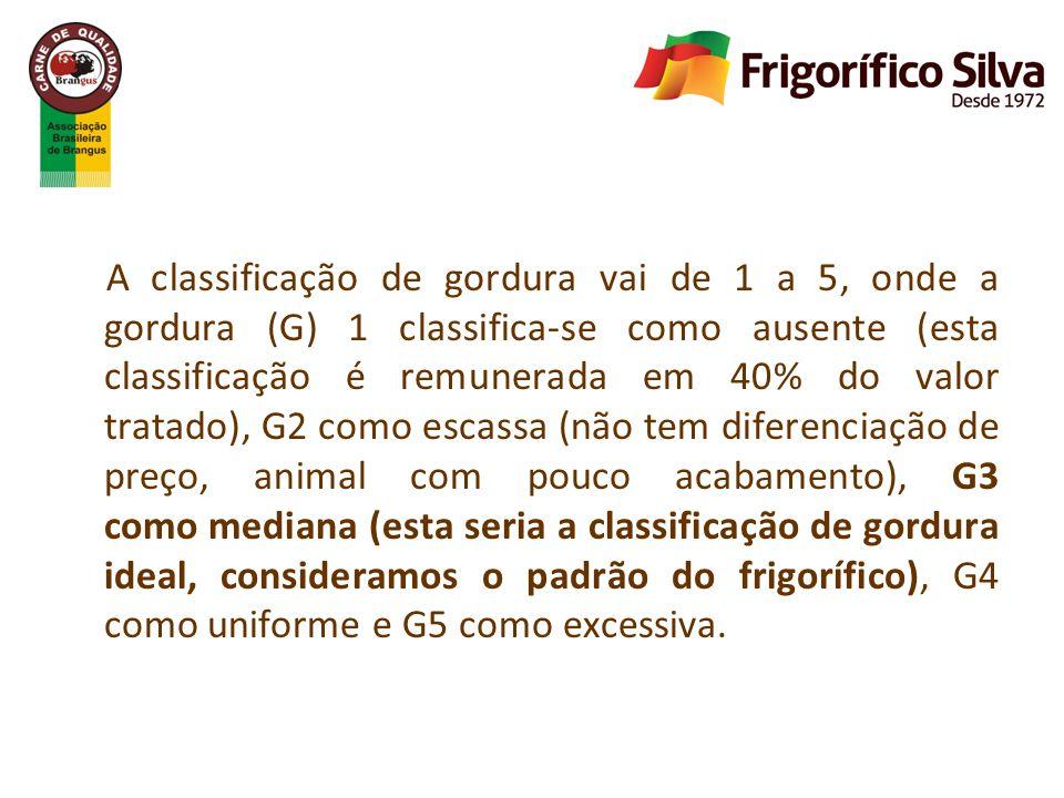 A classificação de gordura vai de 1 a 5, onde a gordura (G) 1 classifica-se como ausente (esta classificação é remunerada em 40% do valor tratado), G2 como escassa (não tem diferenciação de preço, animal com pouco acabamento), G3 como mediana (esta seria a classificação de gordura ideal, consideramos o padrão do frigorífico), G4 como uniforme e G5 como excessiva.
