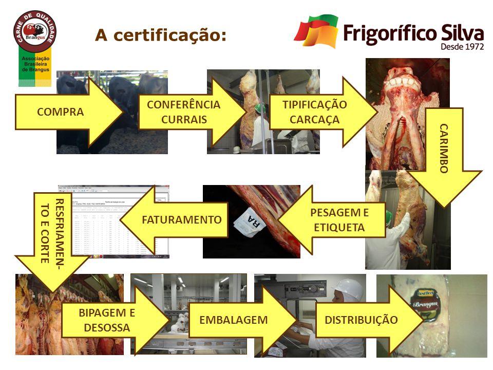 COMPRA CONFERÊNCIA CURRAIS TIPIFICAÇÃO CARCAÇA CARIMBO RESFRIAMEN- TO E CORTE BIPAGEM E DESOSSA EMBALAGEMDISTRIBUIÇÃO PESAGEM E ETIQUETA FATURAMENTO A certificação: