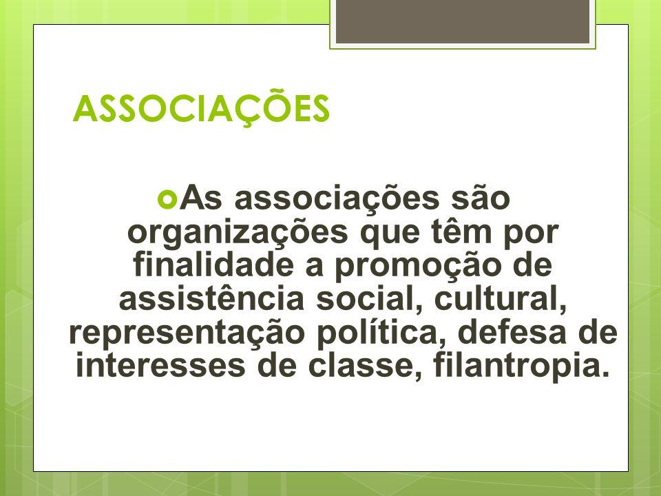  As associações são organizações que têm por finalidade a promoção de assistência social, cultural, representação política, defesa de interesses de c