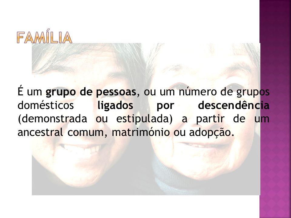 É um grupo de pessoas, ou um número de grupos domésticos ligados por descendência (demonstrada ou estipulada) a partir de um ancestral comum, matrimónio ou adopção.
