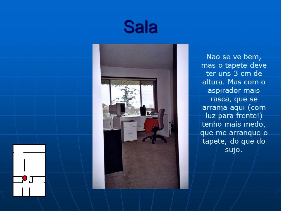 Sala Nao se ve bem, mas o tapete deve ter uns 3 cm de altura.