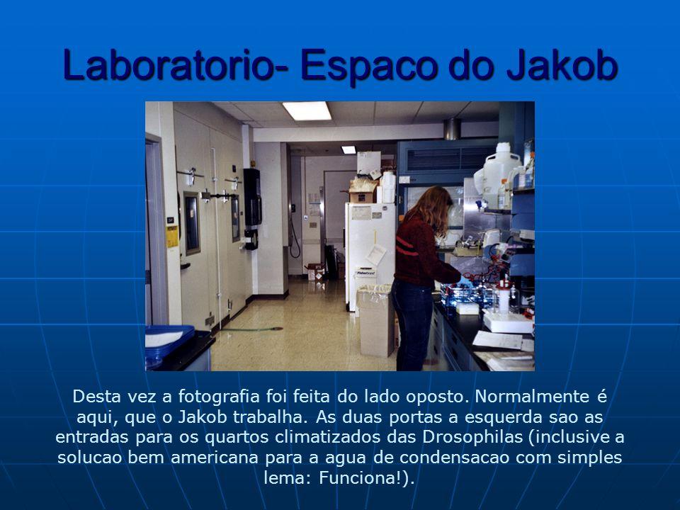 Laboratorio- Espaco do Jakob Desta vez a fotografia foi feita do lado oposto.