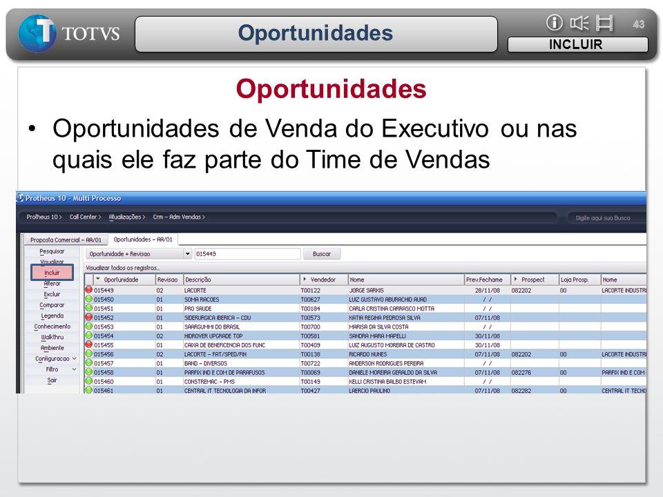 43 Oportunidades INCLUIR •Oportunidades de Venda do Executivo ou nas quais ele faz parte do Time de Vendas