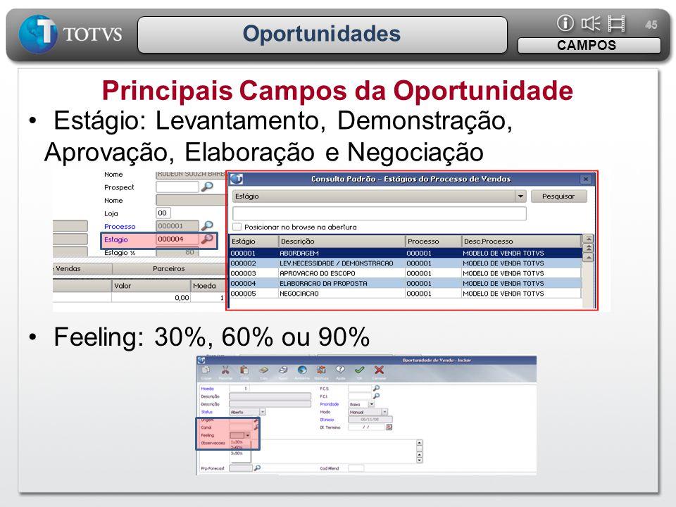 45 Oportunidades Principais Campos da Oportunidade CAMPOS •Estágio: Levantamento, Demonstração, Aprovação, Elaboração e Negociação •Feeling: 30%, 60%