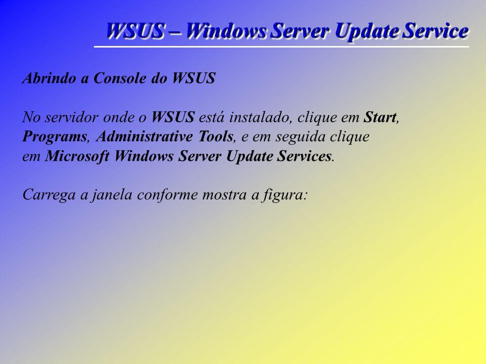 Requisitos e Recomendações de Disco Para instalar o WSUS, o sistema de arquivos do servidor deve atender aos seguintes requisitos: • Tanto a partição