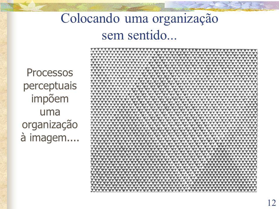 12 Colocando uma organização sem sentido... Processos perceptuais impõem uma organização à imagem....