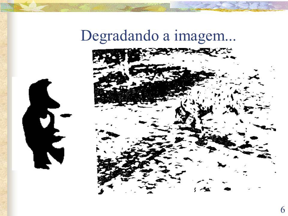 6 Degradando a imagem...