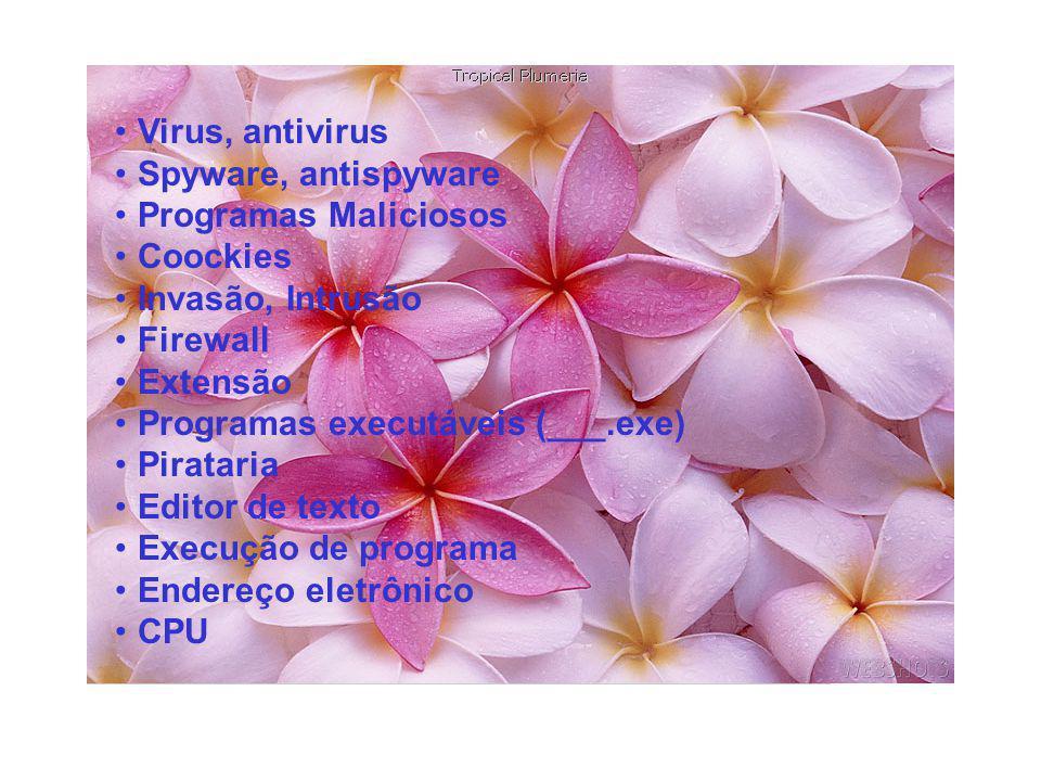 •Virus, antivirus •Spyware, antispyware •Programas Maliciosos •Coockies •Invasão, Intrusão •Firewall •Extensão •Programas executáveis (___.exe) •Pirat