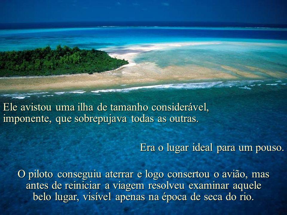 Um velho avião cortava os céus e, lá em baixo, o rio Araguaia, seco, aparecia salpicado de ilhotas. E o piloto resolveu pousar no primeiro lugar que a