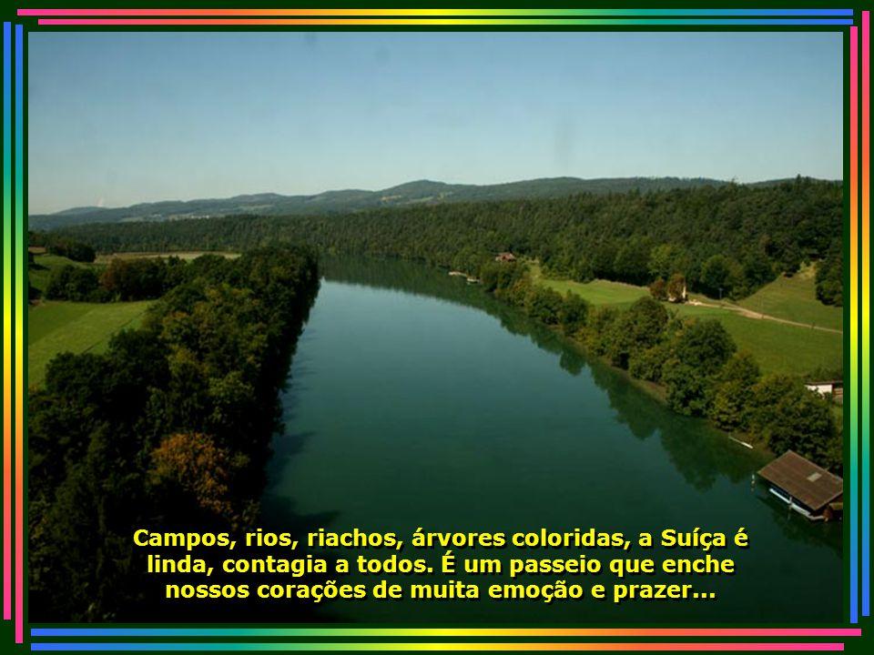 Campos, rios, riachos, árvores coloridas, a Suíça é linda, contagia a todos.