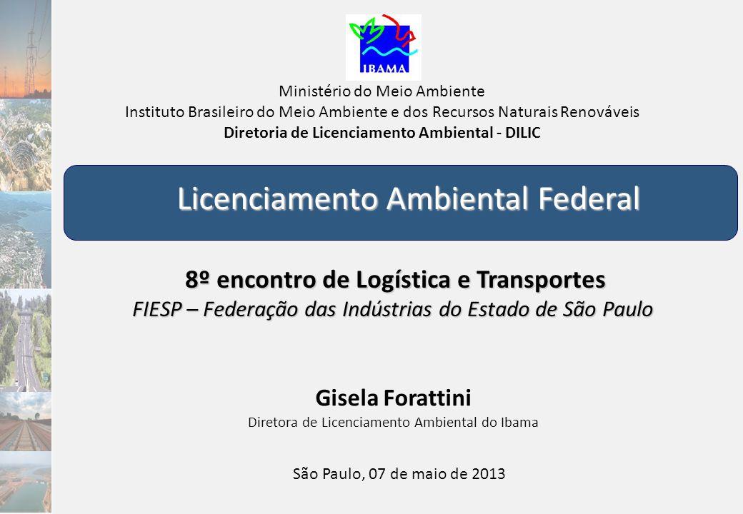 Portos e Hidrovias Portos Agência Nacional de Transportes Aquaviários – ANTAQ 2012: os portos brasileiros (públicos e privados) movimentaram 904 milhões de ton Plano Nacional de Logística Portuária – PNLP Investimentos de R$ 54,2 bilhões para portos nos próximos 5 anos – PIL 53% dos portos do PIL estão em licenciamento no Ibama Programa Nacional de Regularização de Portos Hidrovias Plano de Regularização e Manutenção 8 hidrovias estratégicas a serem regularizadas