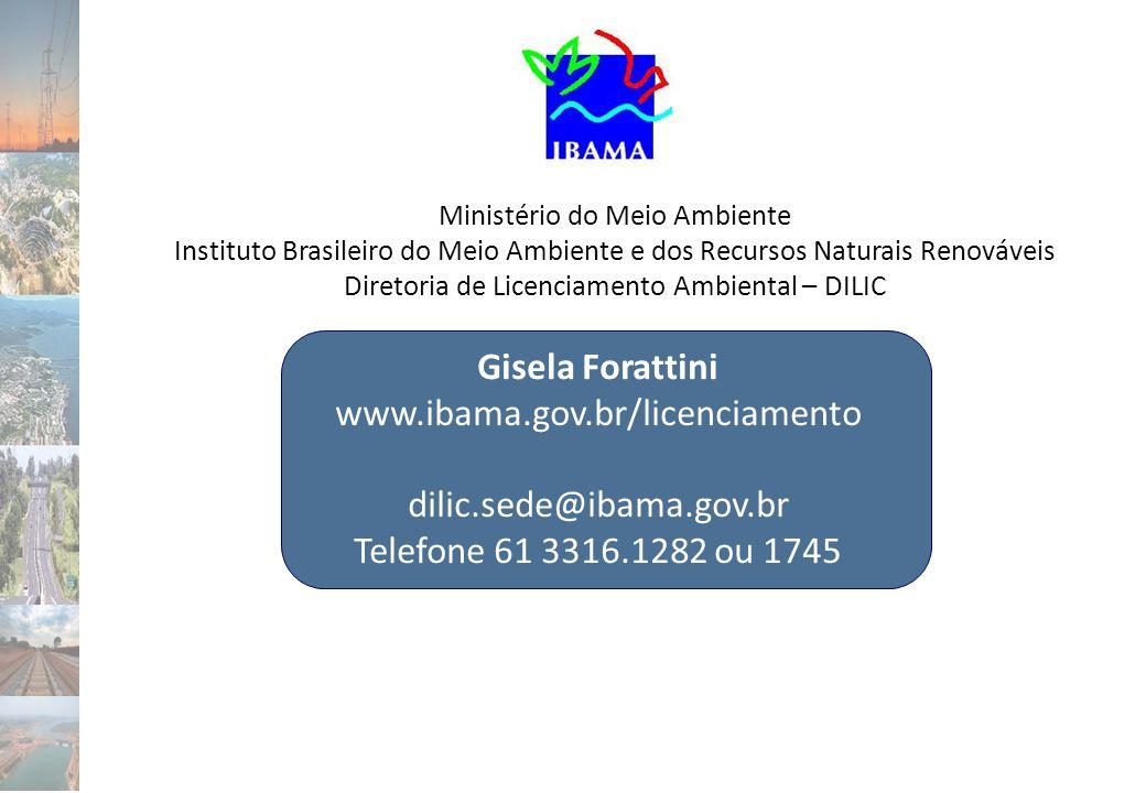 Ministério do Meio Ambiente Instituto Brasileiro do Meio Ambiente e dos Recursos Naturais Renováveis Diretoria de Licenciamento Ambiental – DILIC Gise