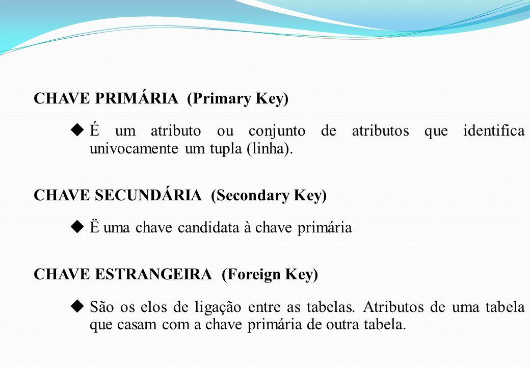 CHAVE PRIMÁRIA (Primary Key) uÉ um atributo ou conjunto de atributos que identifica univocamente um tupla (linha). CHAVE SECUNDÁRIA (Secondary Key) uË