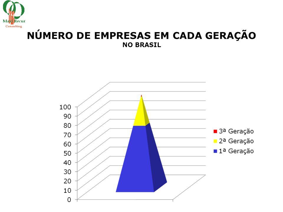 NÚMERO DE EMPRESAS EM CADA GERAÇÃO NO BRASIL