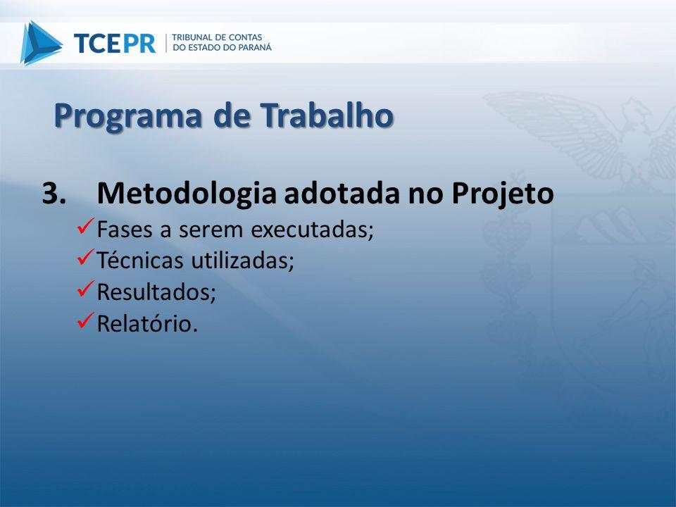3.Metodologia adotada no Projeto  Fases a serem executadas;  Técnicas utilizadas;  Resultados;  Relatório. Programa de Trabalho