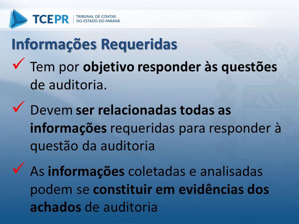  Tem por objetivo responder às questões de auditoria.  Devem ser relacionadas todas as informações requeridas para responder à questão da auditoria