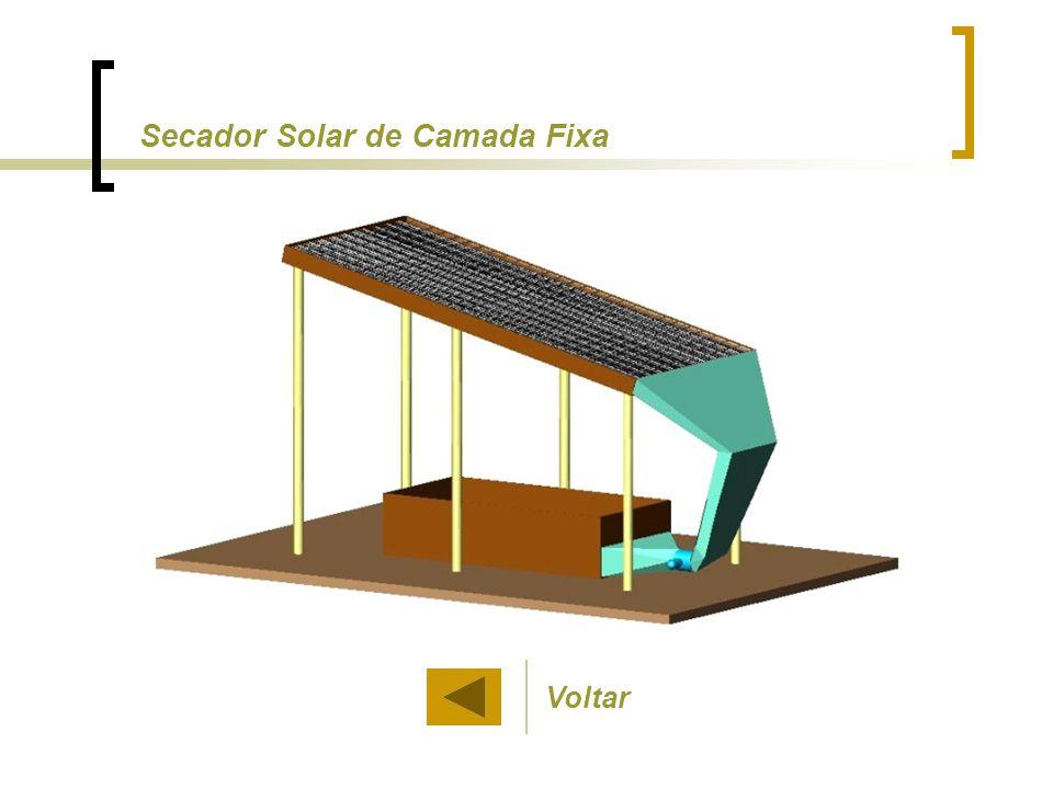 Voltar Secador Solar de Camada Fixa