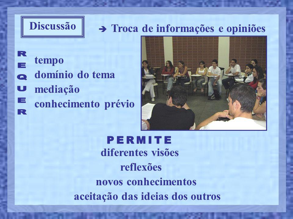 Discussão  Troca de informações e opiniões tempo domínio do tema mediação reflexões novos conhecimentos diferentes visões aceitação das ideias dos ou