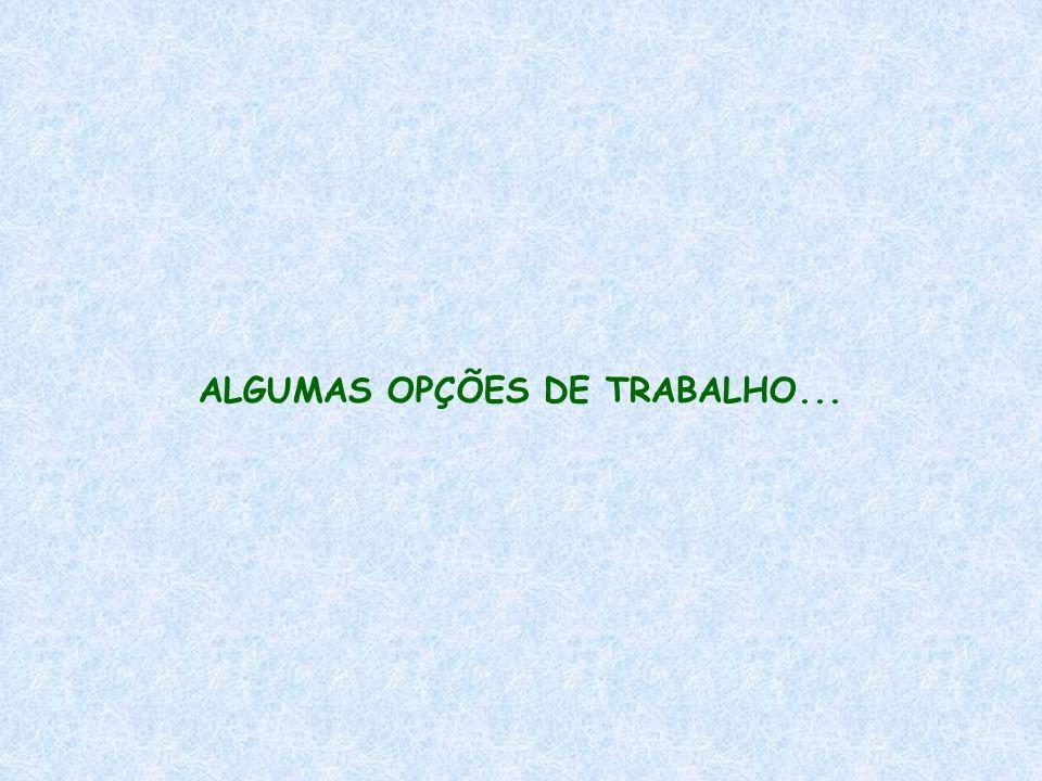 ALGUMAS OPÇÕES DE TRABALHO...