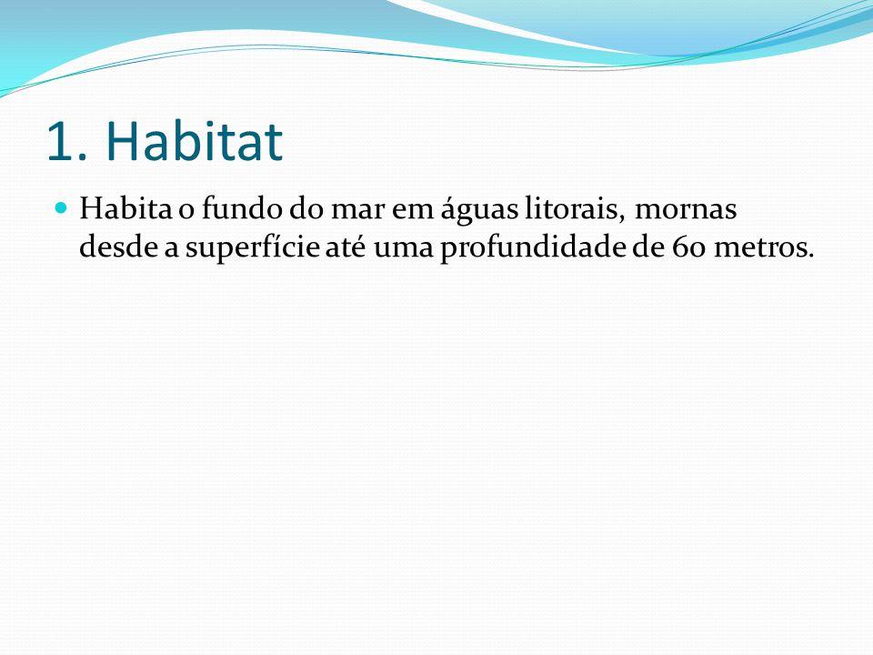 1. Habitat  Habita o fundo do mar em águas litorais, mornas desde a superfície até uma profundidade de 60 metros.