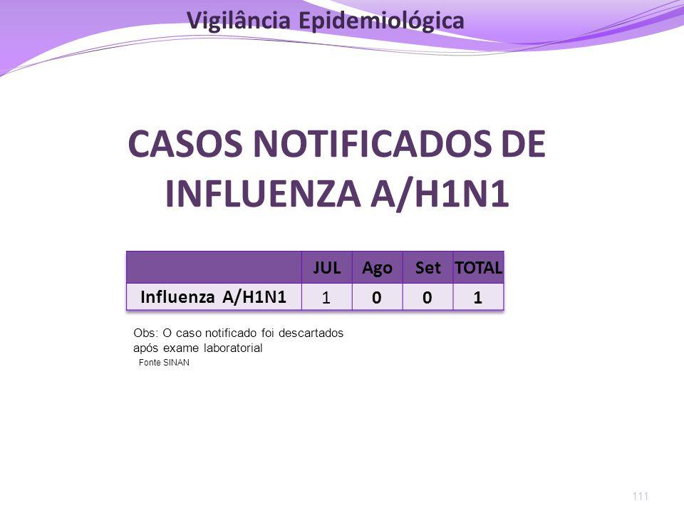 111 CASOS NOTIFICADOS DE INFLUENZA A/H1N1 Obs: O caso notificado foi descartados após exame laboratorial Fonte SINAN Vigilância Epidemiológica