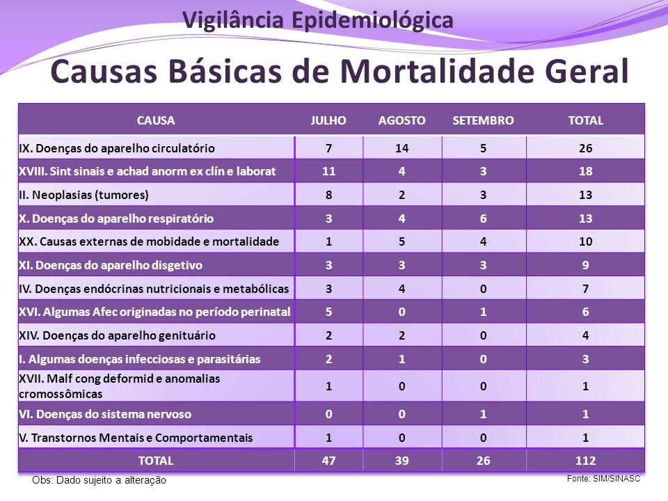 Causas Básicas de Mortalidade Geral Fonte: SIM/SINASC Obs: Dado sujeito a alteração Vigilância Epidemiológica