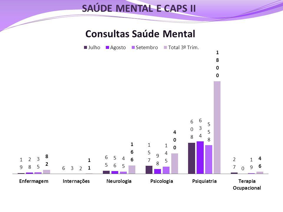 SAÚDE MENTAL E CAPS II